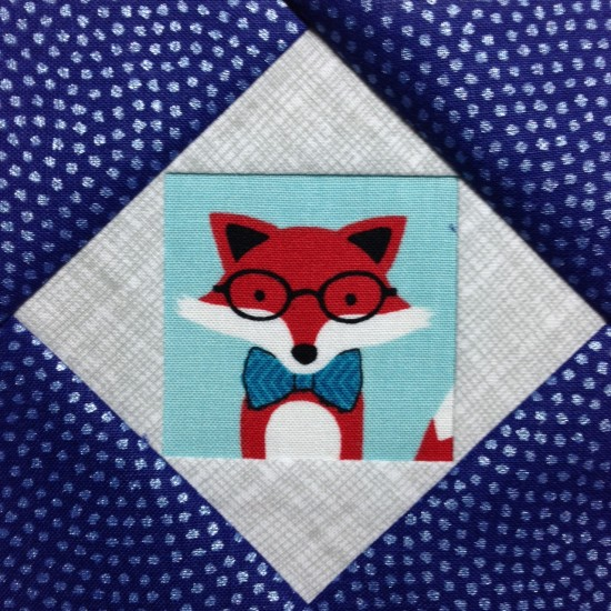 fussy fox (1)